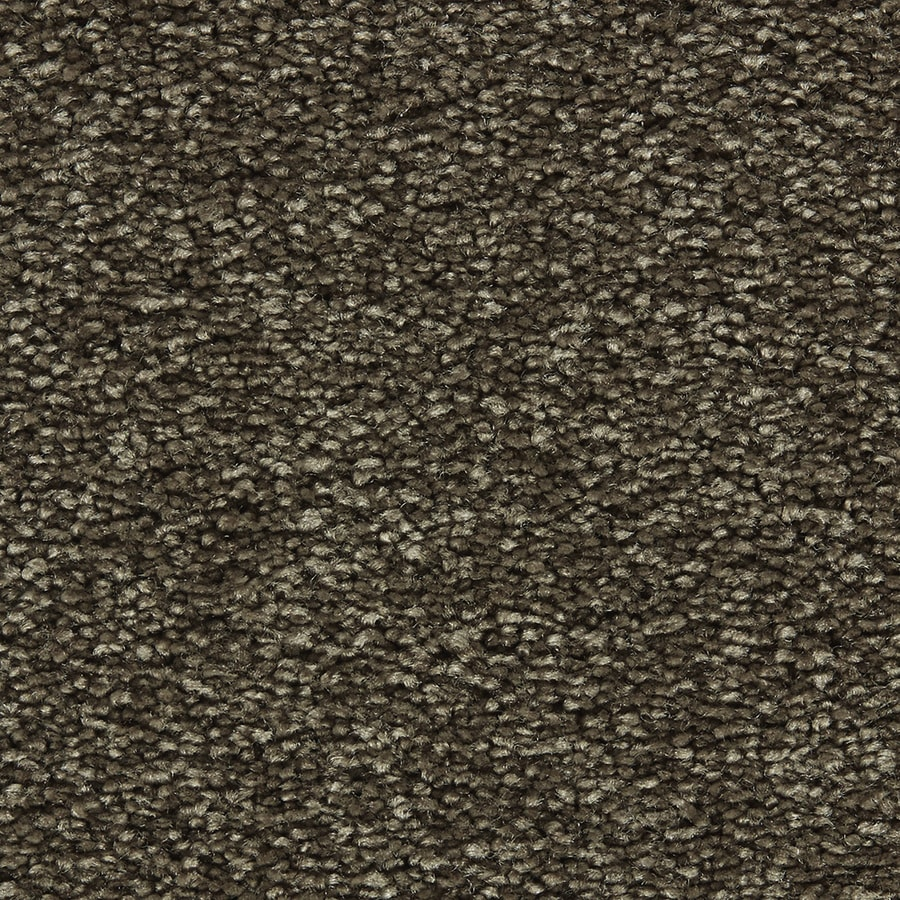 Coronet Centric II Double Espresso Textured Interior Carpet