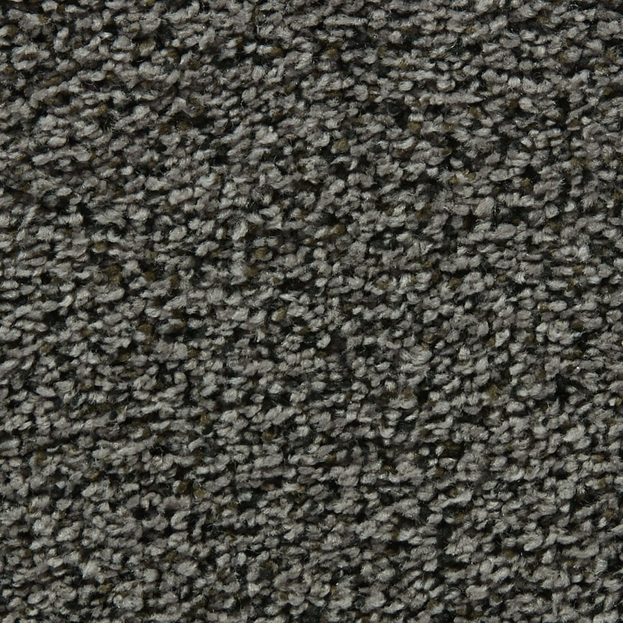 Coronet Enchantress Magic Potion Textured Interior Carpet