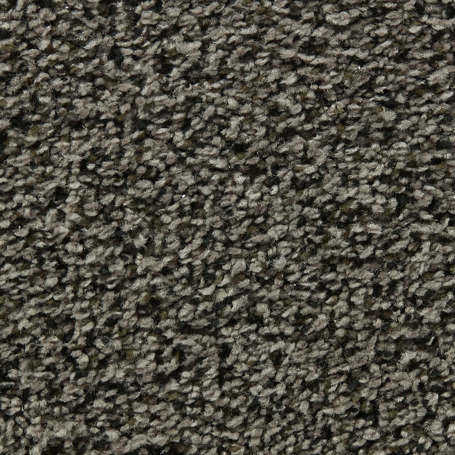 Coronet Enchantress Nest Box Textured Interior Carpet