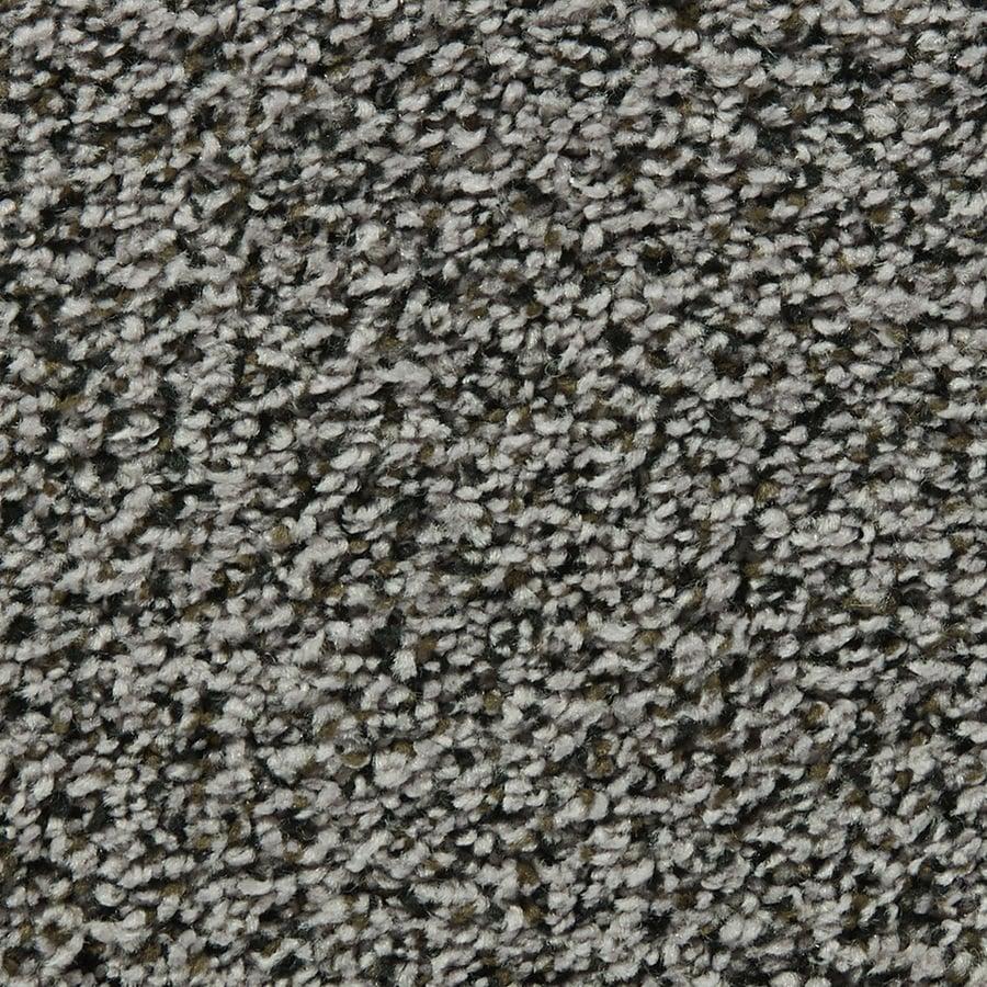 Coronet Enchantress Hollow Tree Textured Interior Carpet
