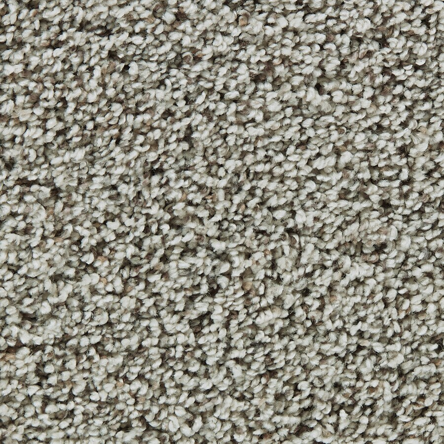 Coronet Enchantress Wisdom Textured Indoor Carpet