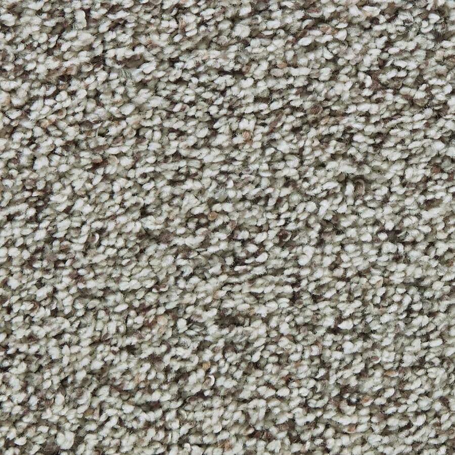 Coronet Enchantress Snow Owl Textured Interior Carpet