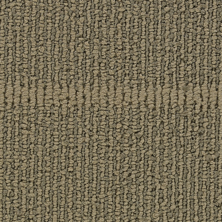 Coronet Founder 18-Pack 24-in x 24-in Ambition Berber/Loop Full Spread Adhesive Carpet Tile