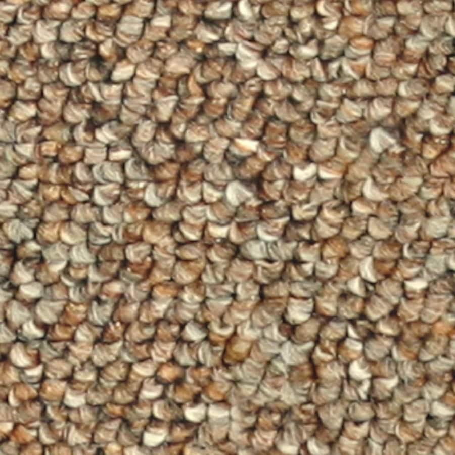 Coronet Stock Carpet Cinnamon Textured Interior Carpet