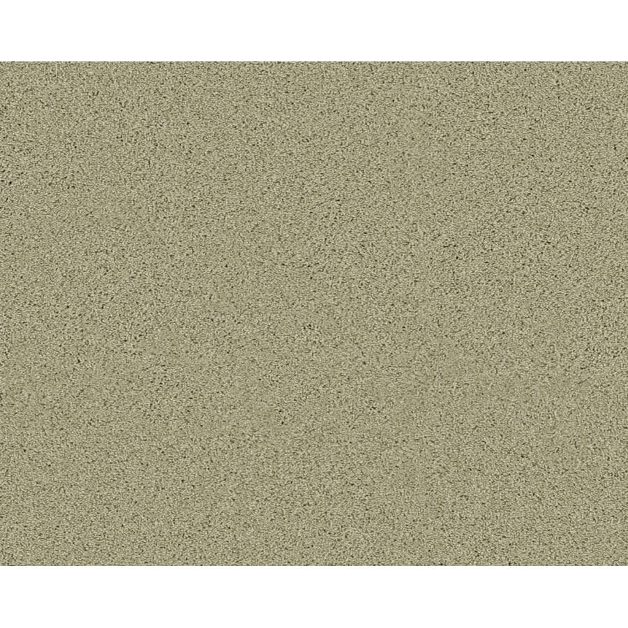 Sage Green Carpet Lets See Carpet New Design