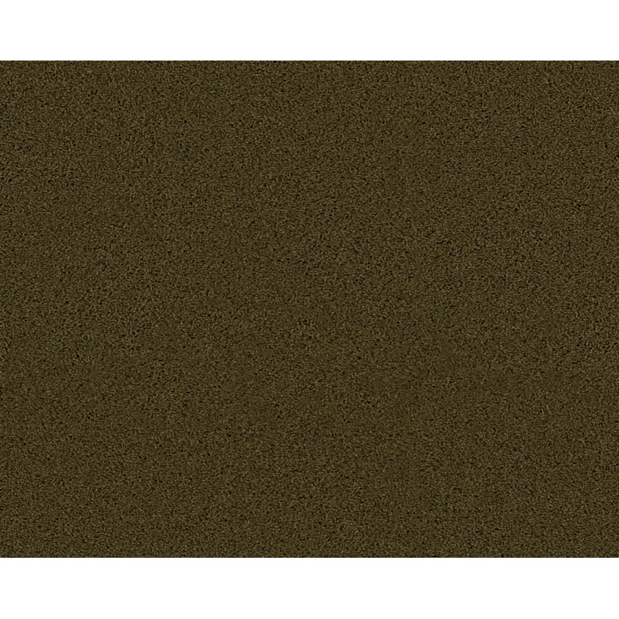 STAINMASTER Active Family Euphoria Sagewood Textured Indoor Carpet
