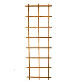 Shop Garden Trellises at Lowes