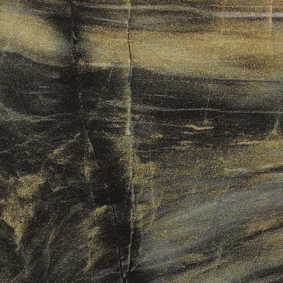 Shop formica brand laminate petrified wood fx etchings