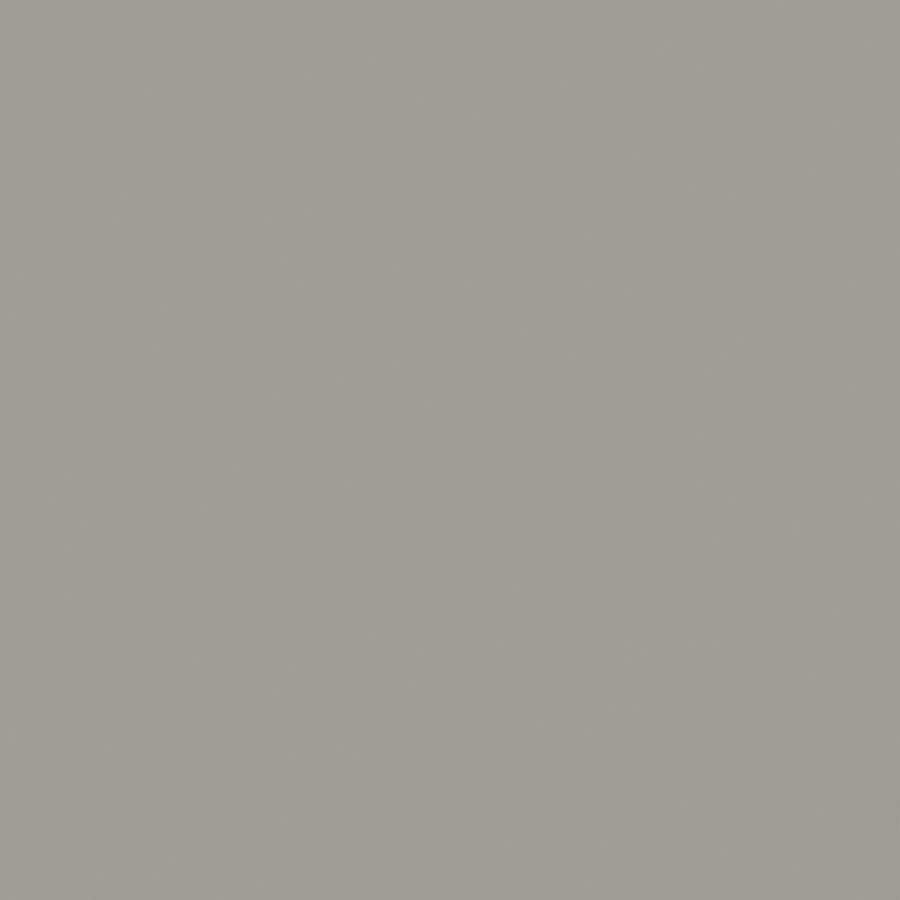 Wilsonart Standard 48-in x 120-in Dove Grey Laminate Kitchen Countertop Sheet