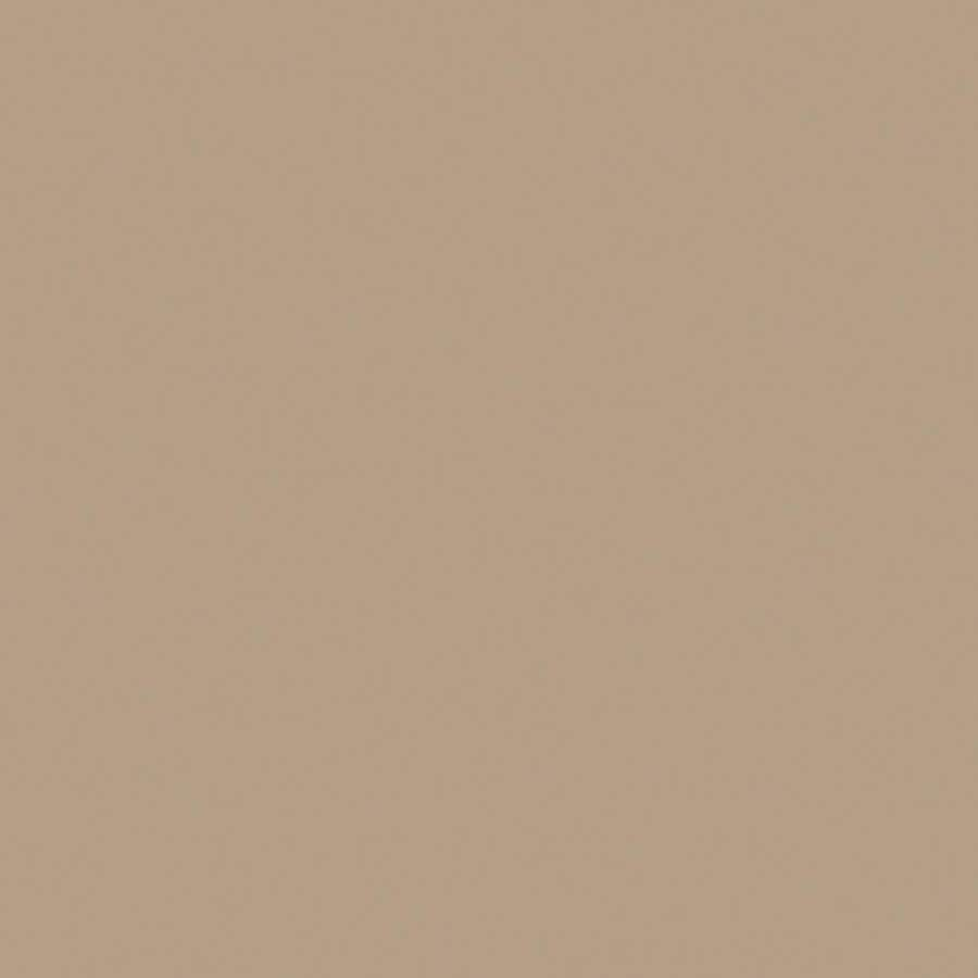 Wilsonart Standard 36-in x 144-in Khaki Brown Laminate Kitchen Countertop Sheet