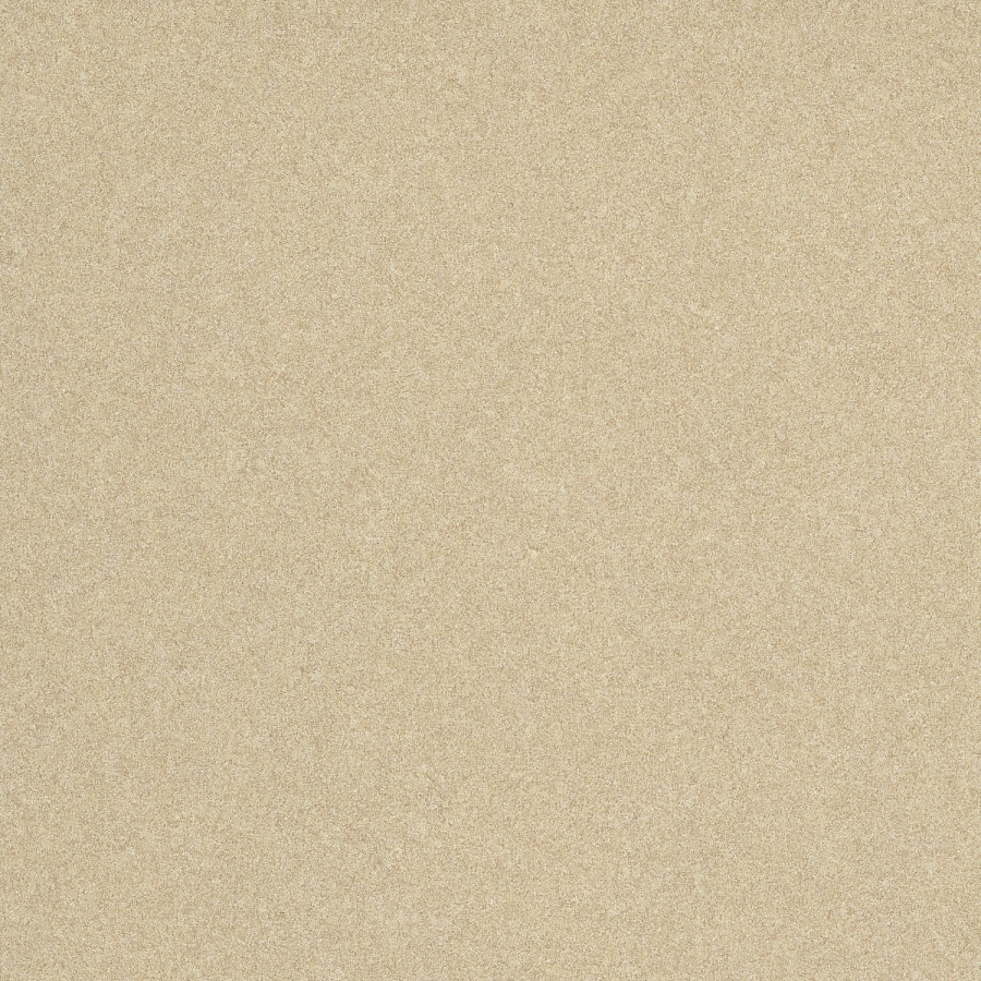 Wilsonart 48-in x 120-in Desert Zephyr Laminate Kitchen Countertop Sheet