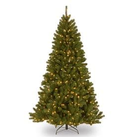 6.5 North Valley Spruce Tree with Clear Lights
