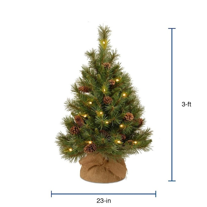 Pc3 Christmas Service 2020 National Tree Company 3 ft Pre Lit Traditional Artificial