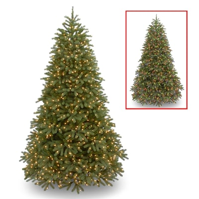 separation shoes ed622 855ab National Tree Company 6.5-ft Pre-Lit Jersey Fraser Fir ...