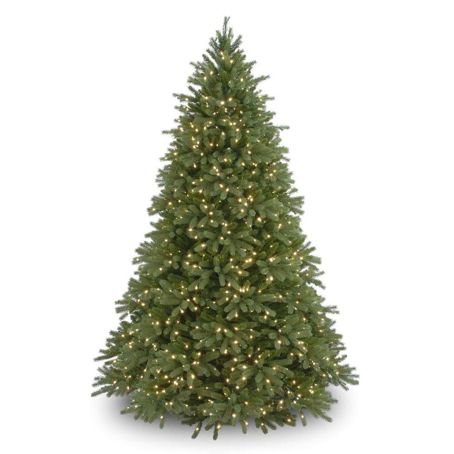 Real Christmas Trees Lowes: National Tree Company 6.5-ft Pre-Lit Jersey Fraser Fir
