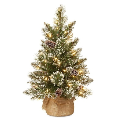 National Tree Company 2 Ft Pre Lit Artificial Christmas Tree With 15 Constant White Clear Led Lights by Lowe's