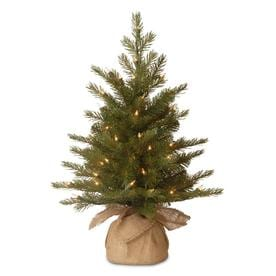 National Tree Company 2-ft Pre-Lit Nordic Spruce Tree with Clear Lights