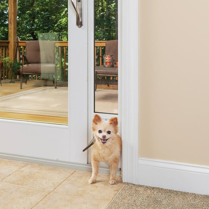 Petsafe Patio Panel Small White Aluminum Sliding Pet Door In The Pet Doors Department At Lowes Com It makes a statement and sets the tone for the rest of outswing (o/s): petsafe patio panel small white aluminum sliding pet door