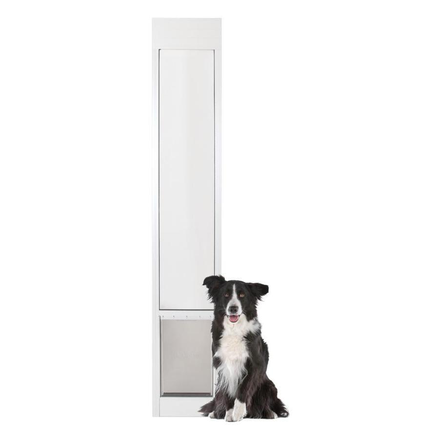 PetSafe Patio Panel Large White Aluminum Sliding Pet Door (Actual 16.375-in x 10.25-in)  sc 1 st  Loweu0027s & PetSafe Patio Panel Large White Aluminum Sliding Pet Door (Actual ...