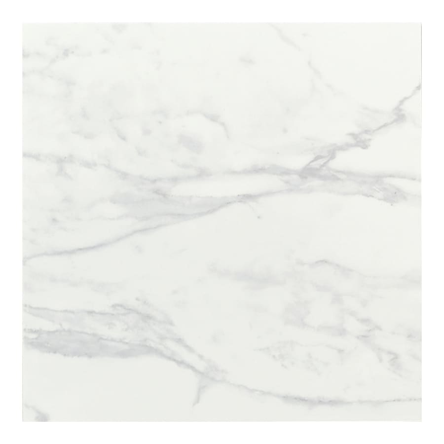 Shop American Olean Pack X Catarina Coliseum White Glazed - 6 x 12 white porcelain tile