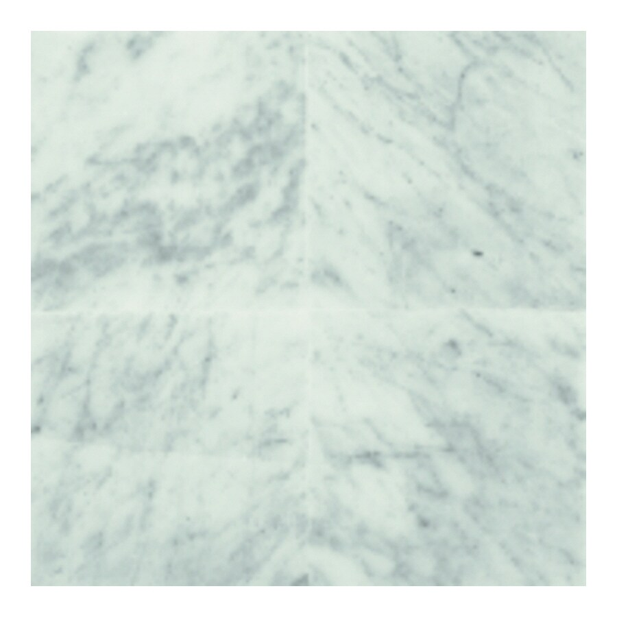 Shop American Olean Marble 10-Pack Carrara White Marble Floor And ...