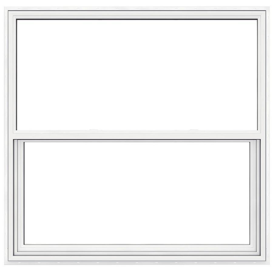 Shop jeld wen premium atlantic vinyl double pane impact for Best double hung windows reviews