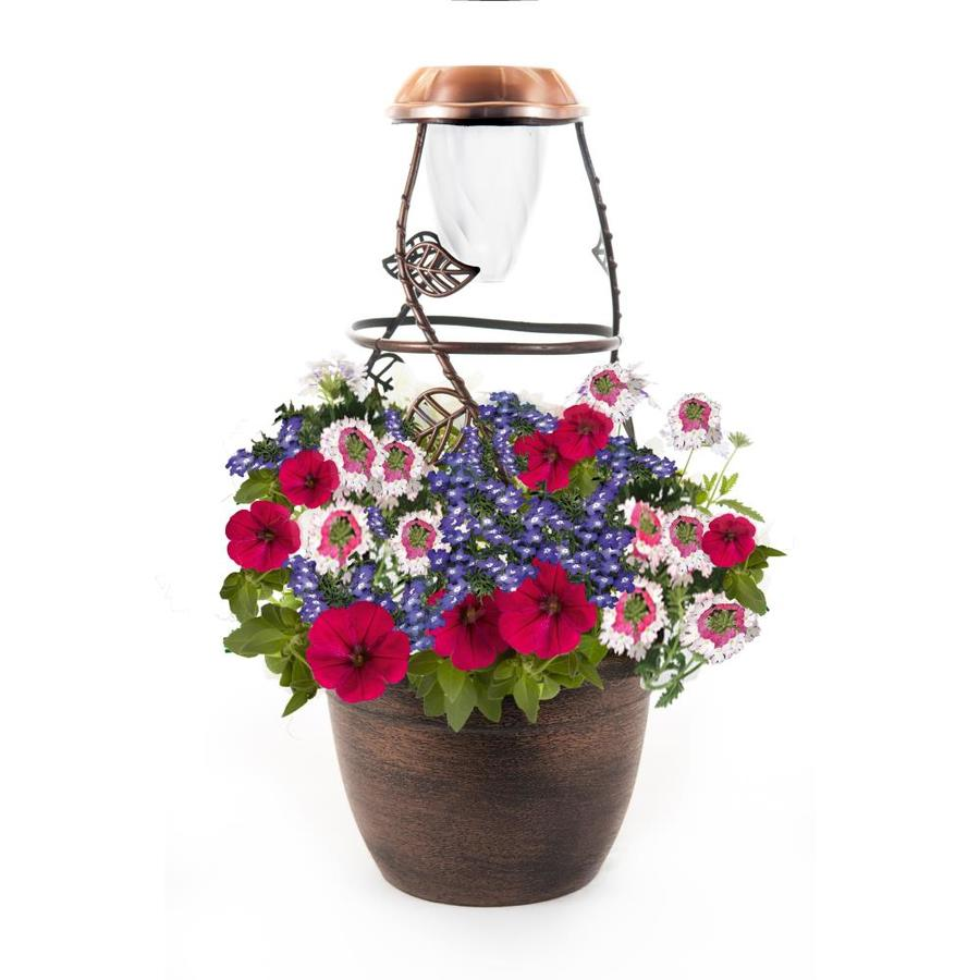 Solaradiance Electric Harmony Antique Bronze Planter Kit