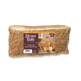 Floracraft Barley Straw