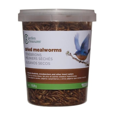 Garden Treasures Meal Worms at Lowes com