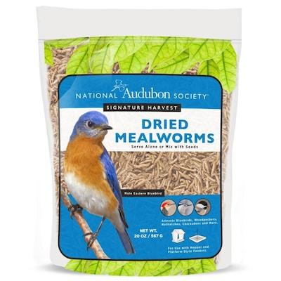 6-oz Mealworms Bird Seed on house wren house plans, purple martin house plans, pvc bluebird house plans, national wildlife bird house plans,
