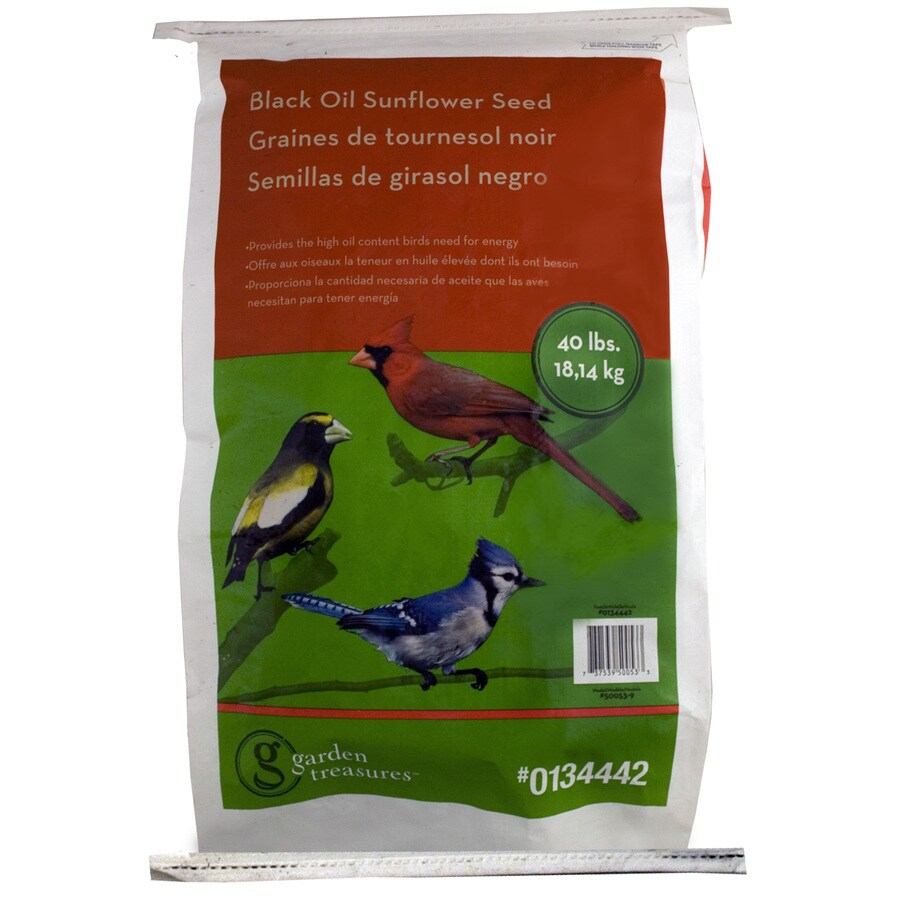 Garden Treasures 40-lb Bird Seed Bag (Black Oil Sunflower)