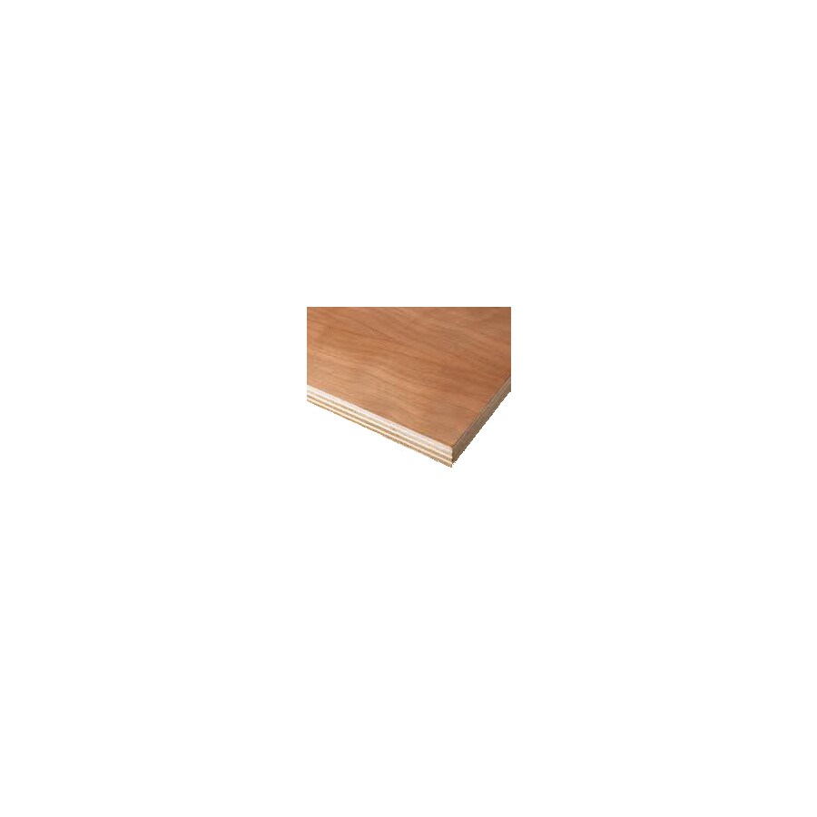 Top Choice Birch Plywood (Actual: 0.25-in)