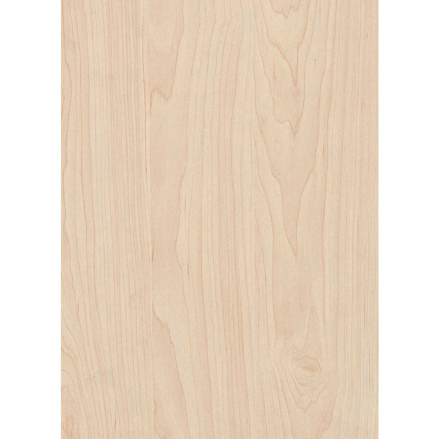 Top Choice Maple Plywood (Actual: 0.703-in)