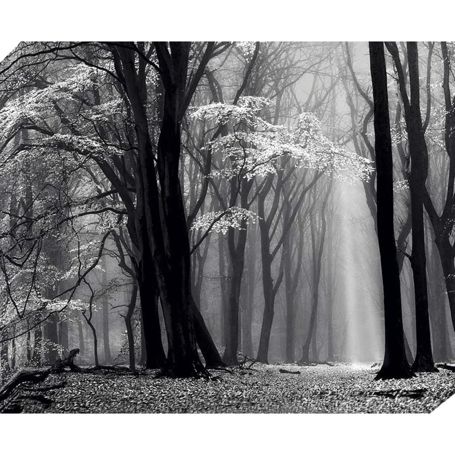 37-in W x 30-in H Frameless Canvas Landscape Print Wall Art