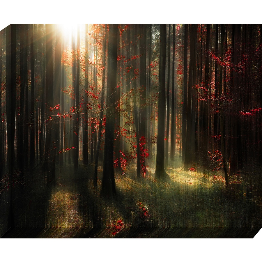 Shop 37 in w x 30 in h frameless landscapes canvas print for Kitchen cabinets lowes with wall print art