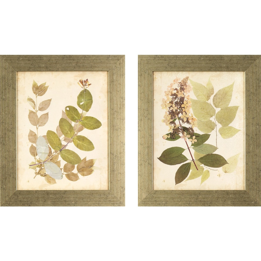 2-Piece 14.5-in W x 17.5-in H Framed Garden Print Wall Art