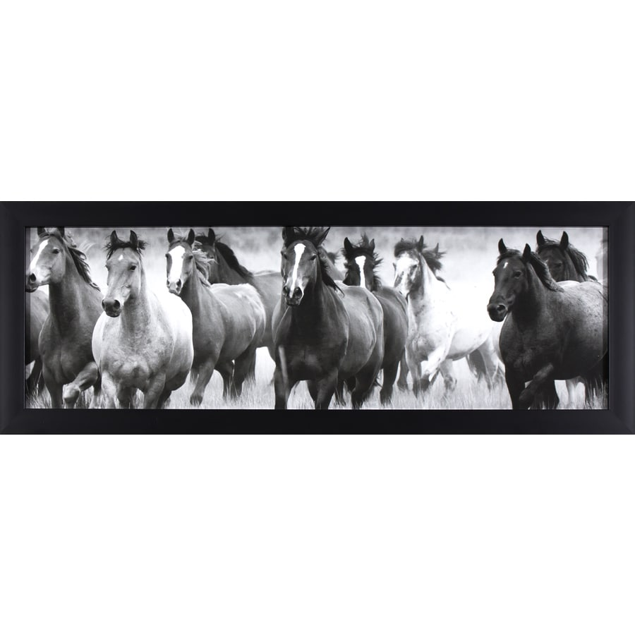 14-in W x 38-in H Framed Animals Print Wall Art
