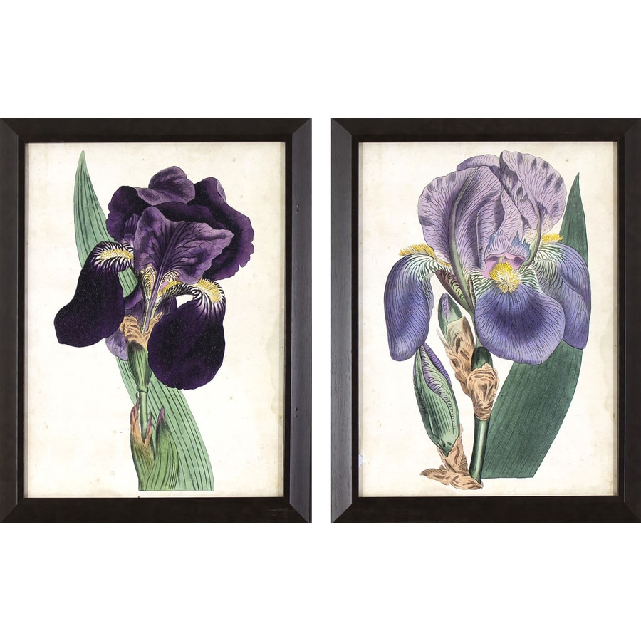 2-Piece 13.75-in W x 17.75-in H Framed Floral Print Wall Art