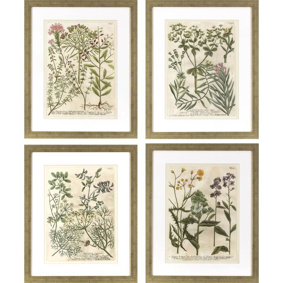 4-Piece 17.75-in W x 21.75-in H Framed Plastic Garden Print Wall Art