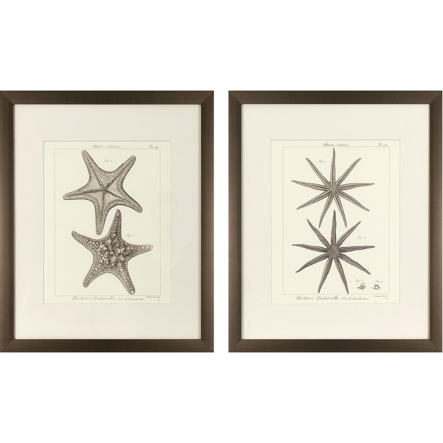 2-Piece 17.75-in W x 21.75-in H Framed Coastal Print Wall Art