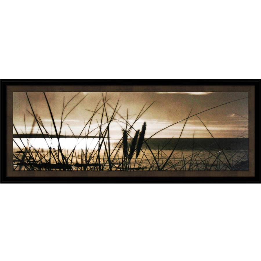 Shop 16 in w x 40 in h framed photography print wall art at - Wall decor photography ...