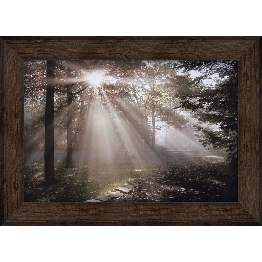 43.5-in W x 31.5-in H Framed Landscapes Print Wall Art