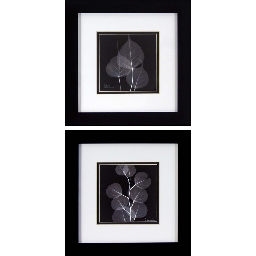 2-Piece 12-in W x 12-in H Framed Photography Wall Art