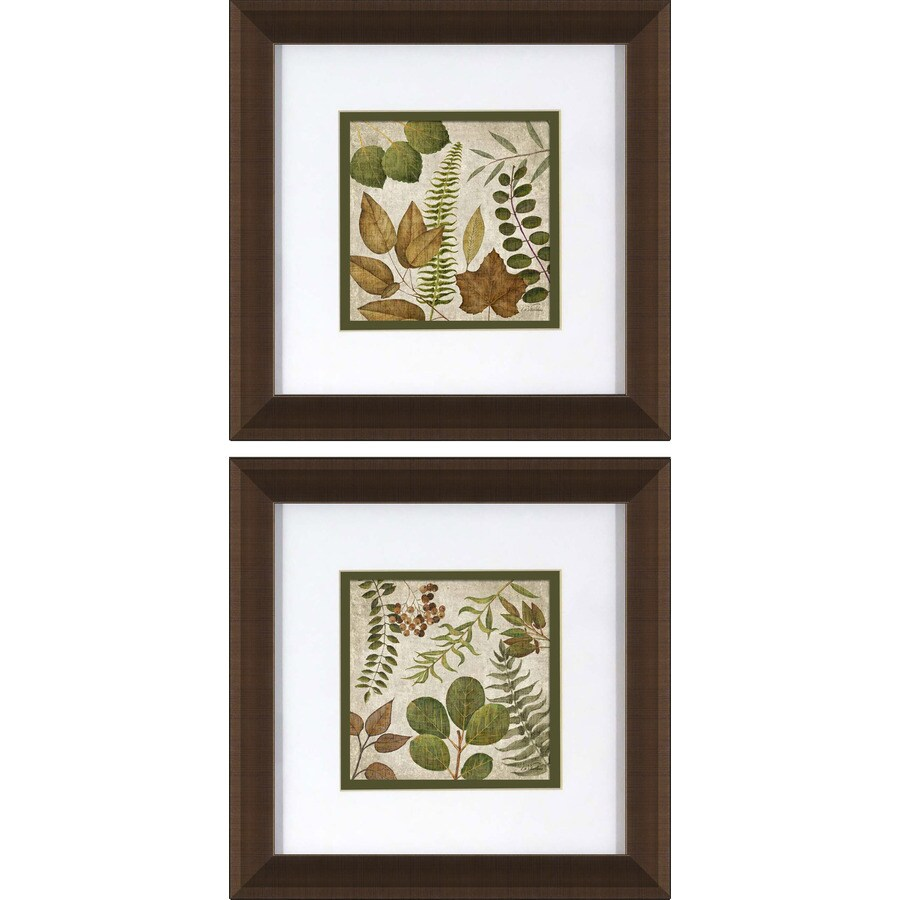 2-Piece 12-in W x 12-in H Framed Floral Wall Art
