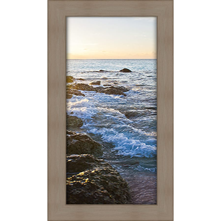16.5-in W x 28.5-in H Framed Plastic Photography Prints Wall Art