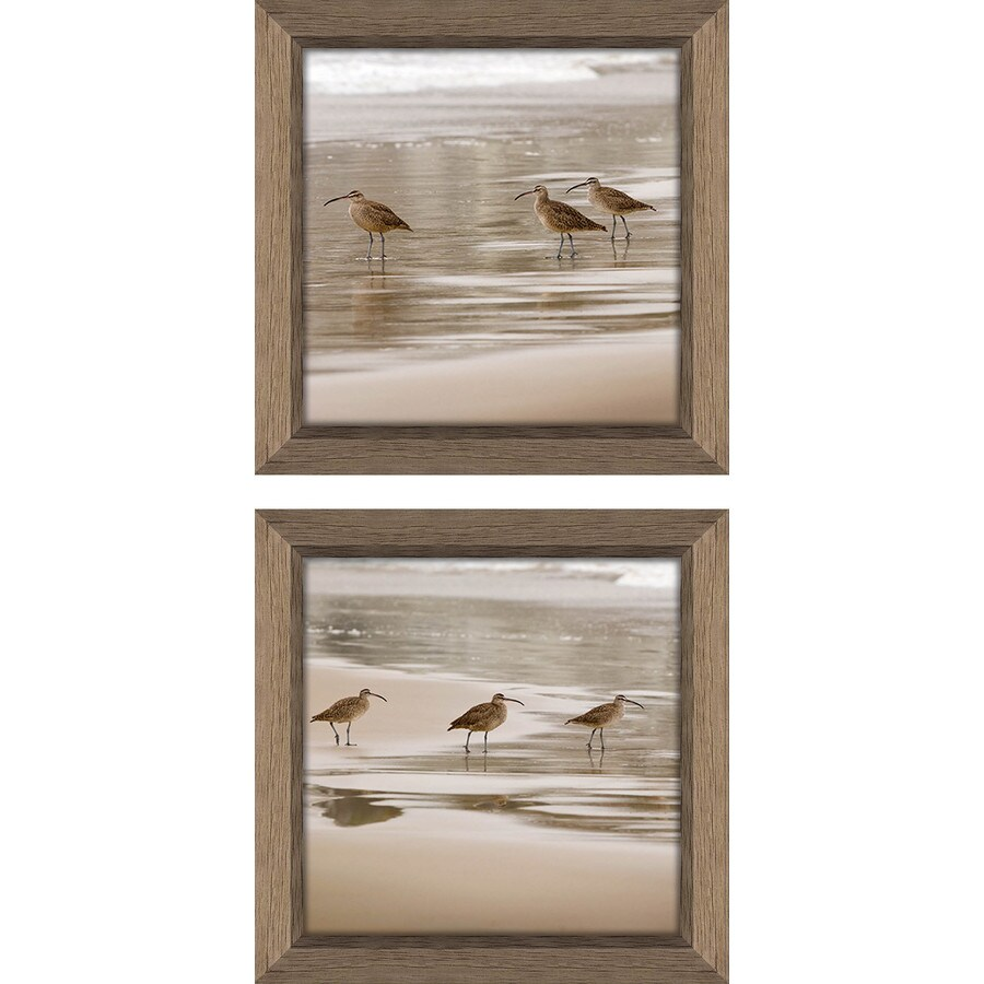 2-Piece 12-in W x 12-in H Framed Plastic Photography Prints Wall Art