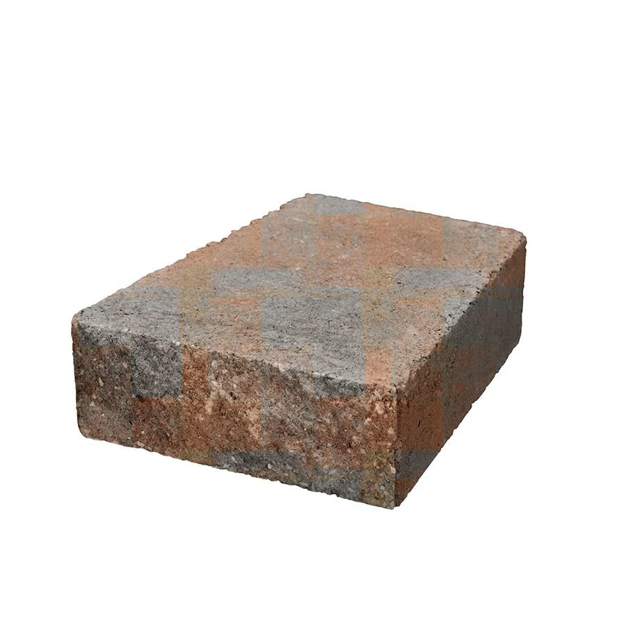 Belgard Palmer Fossil Retaining Wall Block (Common: 3-in x 8-in; Actual: 3-in x 8-in)