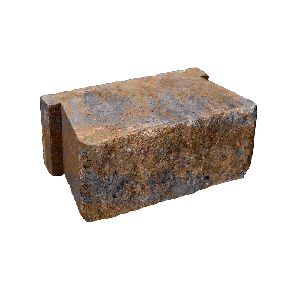Belgard Palmer Bella Retaining Wall Block (Common: 5-in x 12-in; Actual: 5.3-in x 12-in)