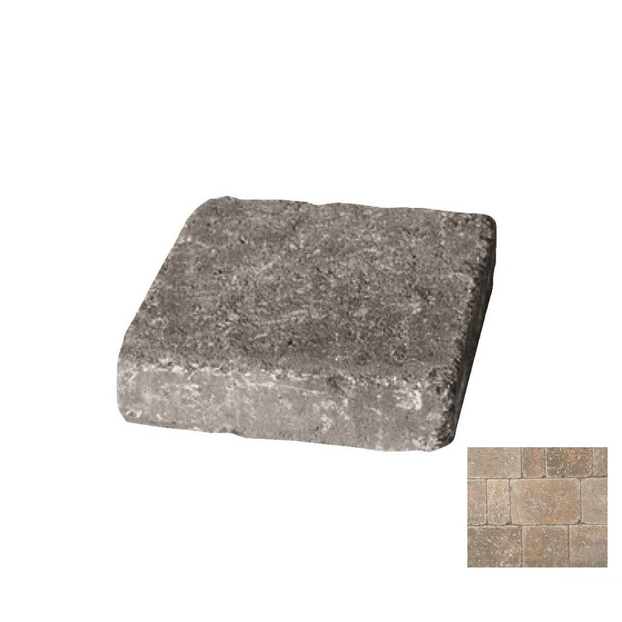 Belgard Dublin Cobble Fossil Beige Paver (Common: 9-in x 9-in; Actual: 9-in x 9-in)