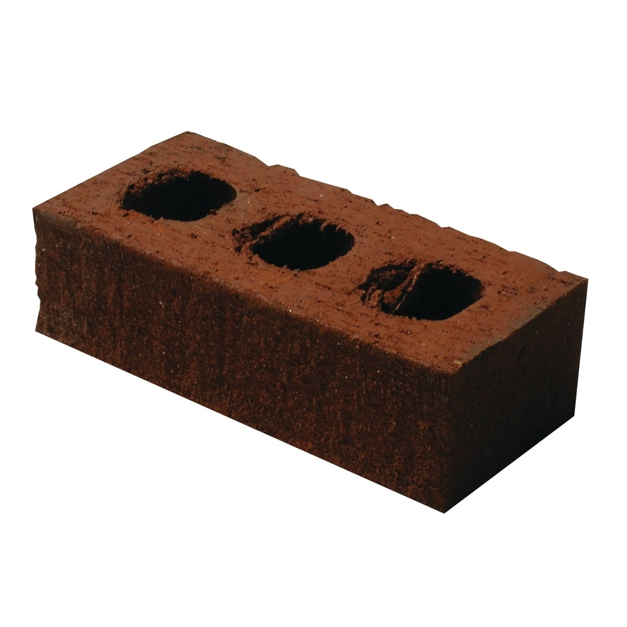 Shop oldcastle red cored brick at for All brick